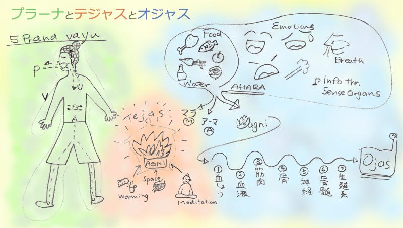 12/10(土) 「暮らしにいかすアーユルヴェーダの基本」