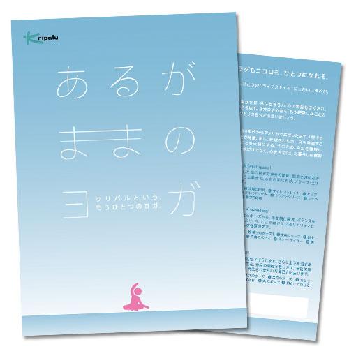DVD『あるがままのヨガ~クリパルという、もう一つのヨガ。~』