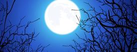 特別クラス「月の満ち欠けとアロマヨガ」